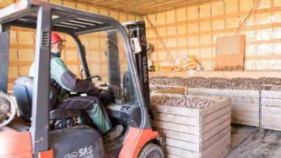 Torking av poteter for lagring nl 3 A7 A2010 MBL