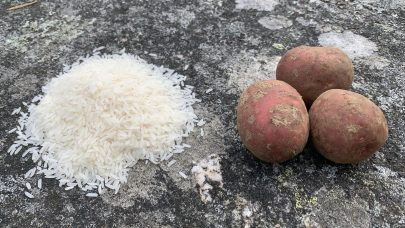 Poteter og ris illustrasjon bg
